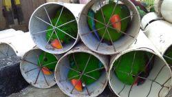 Smokkelaars propten 125 kaketoes en edelpapegaaien in afvoerbuizen