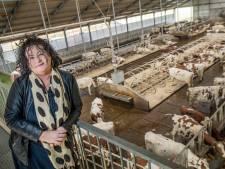 'Boerenpartij' presenteert kandidatenlijst: veel agrariërs uit Oost-Nederland