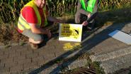 """Zomeractie en sensibilisatie tegen zwerfvuil: """"Riolen zijn er alleen om regenwater op te vangen, geen afval"""""""