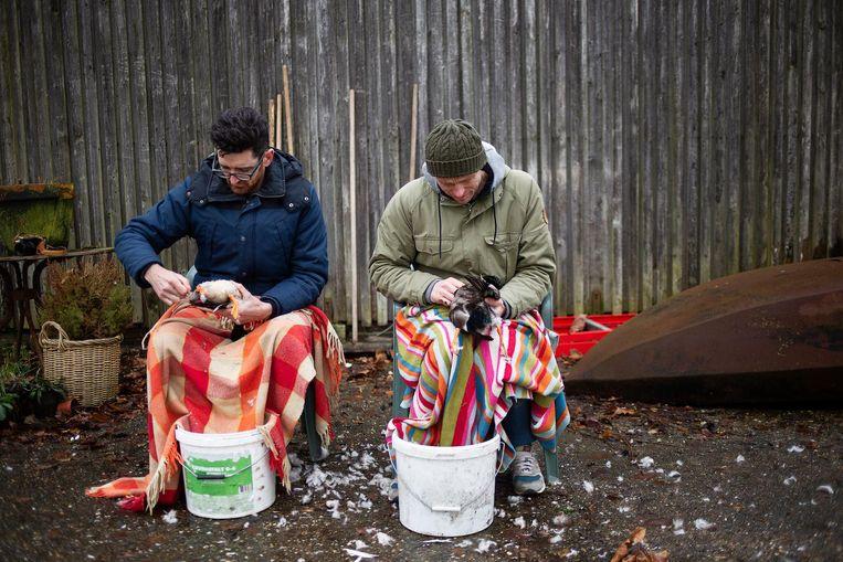 Het plukken van eenden Beeld David de Jong en Tim Stet