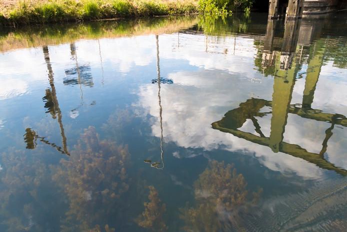 Lucht, land, water en de onderwaterwereld van het Apeldoorns Kanaal bij Loenen