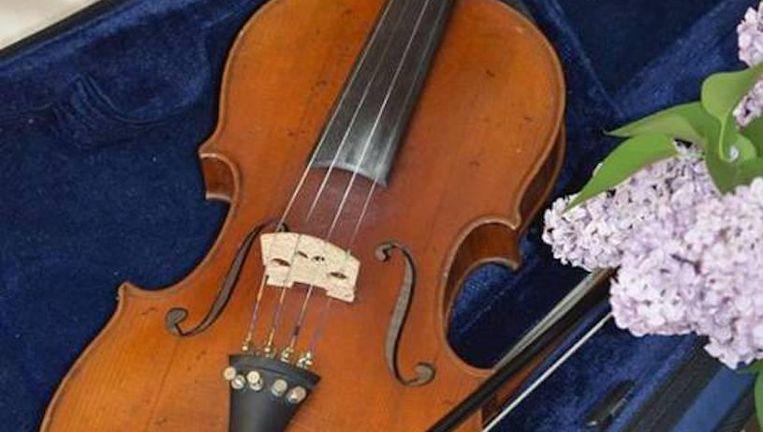 De viool van de in Auschwitz vermoorde Fanny Hecht. Beeld Privéfoto