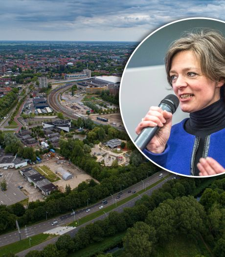 Ongebreidelde hoogbouw? Stadsbouwmeester leidt groei van Zwolle in goede banen