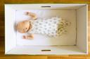 De normaalste zaak van de wereld in Finland: een baby slaapt in een van overheidswege verstrekte kartonnen doos, die allerhande hulpmiddelen bevat voor de pasgeborene.
