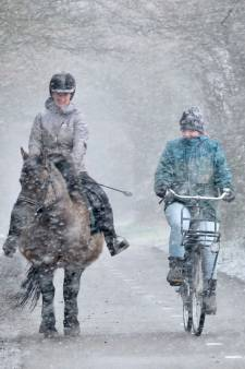 Eindelijk écht winter: kinderen genieten van sneeuwpret