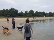 Gemeente zoekt naar drugsafval bij Galderse Meren vanwege zieke honden