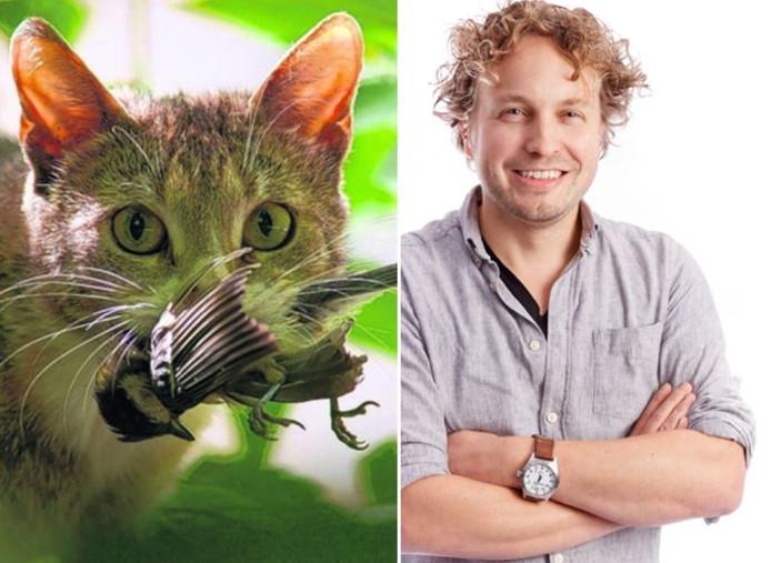 Welke natuur moeten we in stand houden: de jagende kat of de vrije vogel, vraagt columnist Niels Herijgens zich af