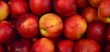 Waarom een appel per dag écht gezond is