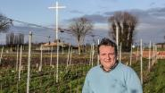 Wijnboer schenkt 3.000 liter wijn weg om alcohol uit te distilleren, maar vreest zelf voor zijn bedrijf door opgelegde coronamaatregelen