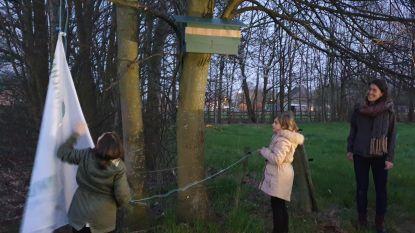 Regionaal Landschap Rivierenland onthult nestkast voor steenuil