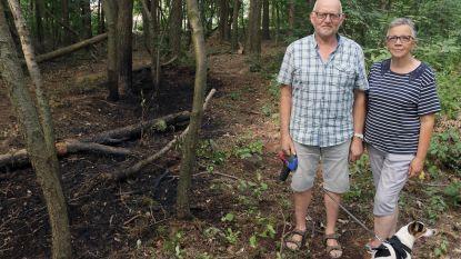 Alerte buren voorkomen bosbrand