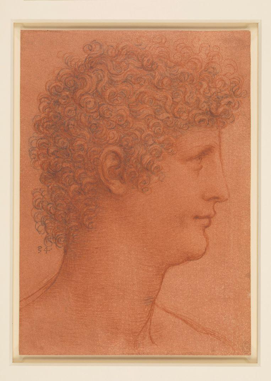 Hoofd van een jonge man, en profil naar rechts (ca. 1510) Dit is een van de meest uitgewerkte tekeningen van een jonge man. Algemeen wordt aangenomen dat het Andrea Salai is, de jongen die op zijn tiende bij Leonardo in huis kwam en tot zijn dood bij hem bleef. Maar in 1510 moet Salai 30 zijn geweest en deze jongen lijkt veel jonger. Talloze keren heeft Leonardo hem getekend, met zijn krullen, rechte neus en mooie mond. Met rood krijt kon Leonardo hetzelfde sfumato-effect (wazige omtrekken) bereiken als waar zijn schilderijen om bekend staan. Beeld Royal Collection Trust/© Her Majesty Queen Elizabeth II 2018