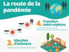 """WWF: """"La pandémie est en partie le résultat de notre impact sur la nature"""""""
