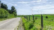"""Hoegaarden: """"Positief advies, maar Vlaanderen beslist over windturbines"""""""