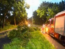 Stormoverlast in Groene Hart lijkt mee te vallen ondanks 'code oranje'