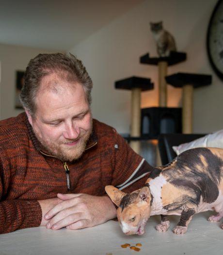 Kale kat Alice vond een nieuw tehuis bij Paul in Arnhem: 'We hebben haar best verwend'