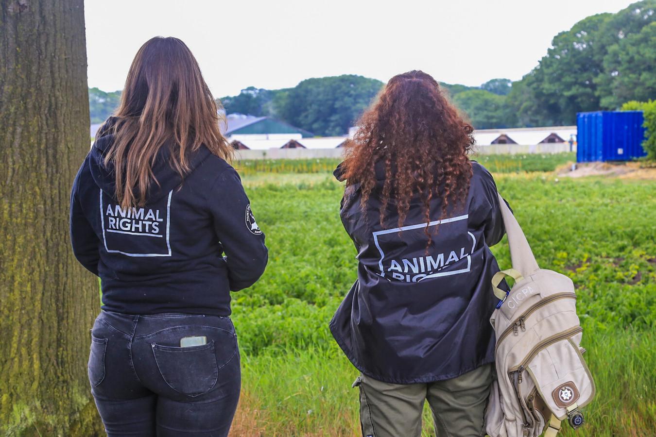 Ook dierenactivisten namen een kijkje bij de ruiming.