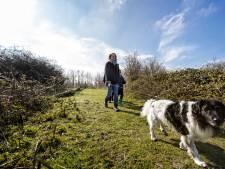 Zoetermeer pakt vierde plek in top 10 groene steden