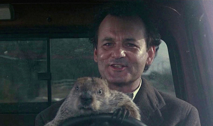 Groundhog Day is te zien op het IFFR, élk jaar weer.