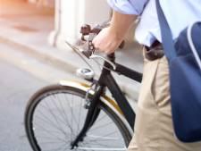 Fietspaden Populierlaan en Frans Halsstraat in Veghel kunnen rekenen op verbetering