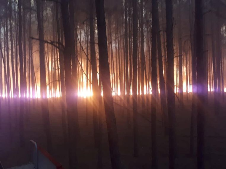 Archiefbeeld van een bosbrand in Duitsland, ter illustratie.
