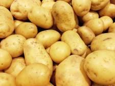 Dieven oogsten stiekem 200 kilo aardappelen