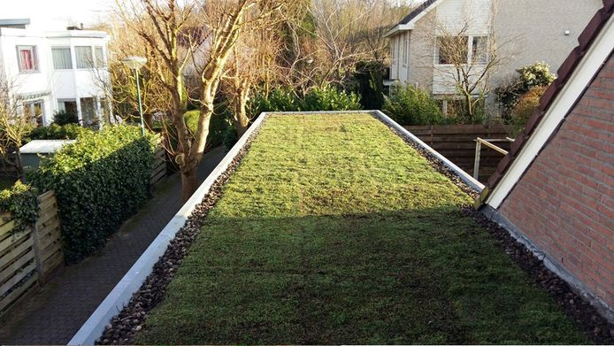 Voorbeeld van een groen dak