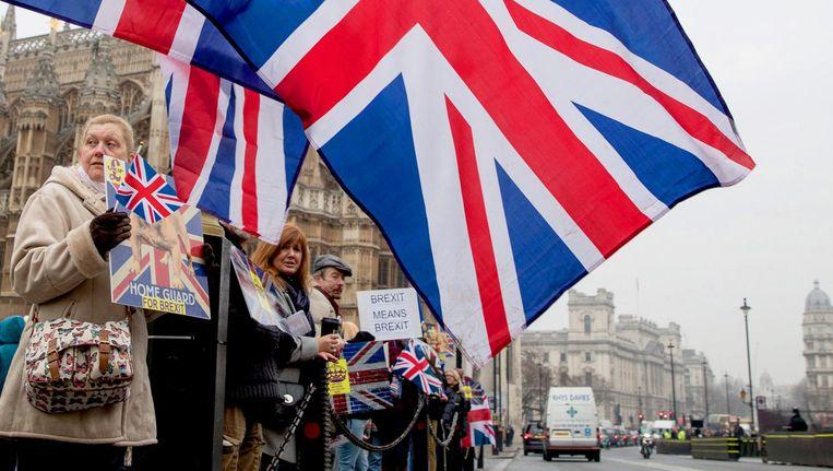 Demonstranten roepen op om Brexit door te laten gaan in Londen. Beeld epa
