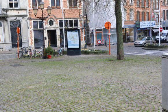 Op heel wat plaatsen in het centrum, zoals hier op de Veemarkt, groeit het gras tussen de stenen door.