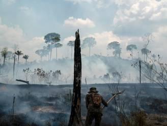 63 mensen opgepakt in verband met bosbranden Amazone