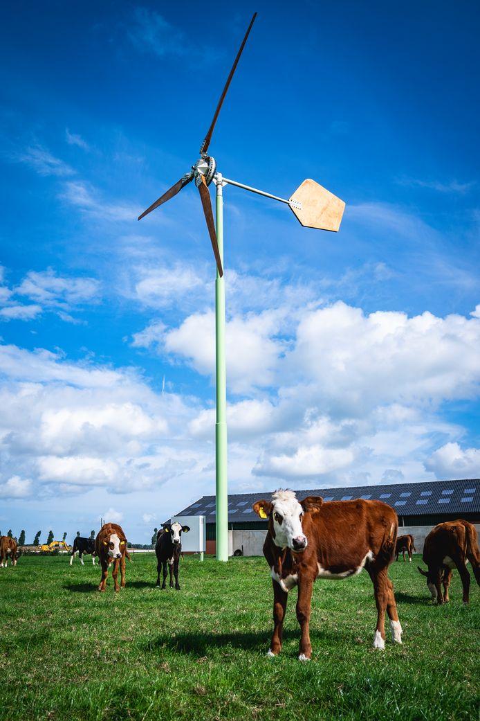Een voorbeeld van een EAZ-windmolen