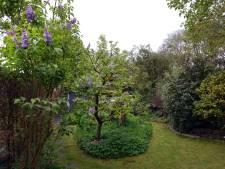 Waar liggen de mooiste tuinen van West-Brabant?