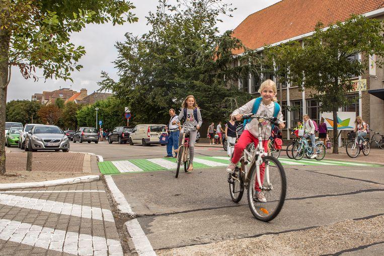 Er is geen fietspad en auto's staan aan beide zijden van de Willem De Roolaan geparkeerd. Dagelijks passeren er heel wat scholieren.