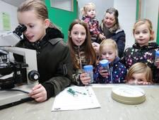 Dierendrolletjes bekijken in nieuw pand van dierenkliniek Meerkerk