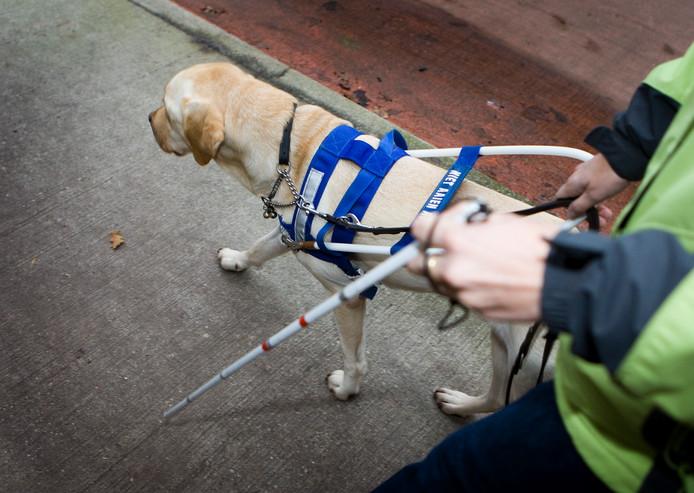 D66 vraagt om een bewustwordingscampagne in Etten-Leur voor de positie van blinden in het verkeer.