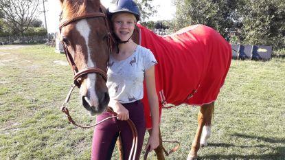 """Anke (13) vraagt aanpassing coronamaatregel: """"Naast paard wandelen mag, maar paardrijden niet. Dat is belachelijk"""""""