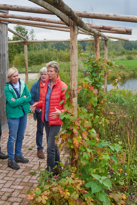 Een voedselbos als nieuwe, luie landbouwvorm op Schouwen-Duiveland