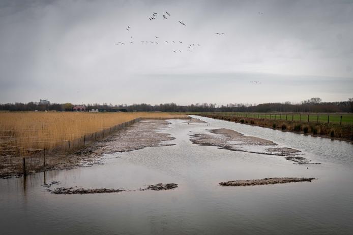 Laag water in Waterrijk.