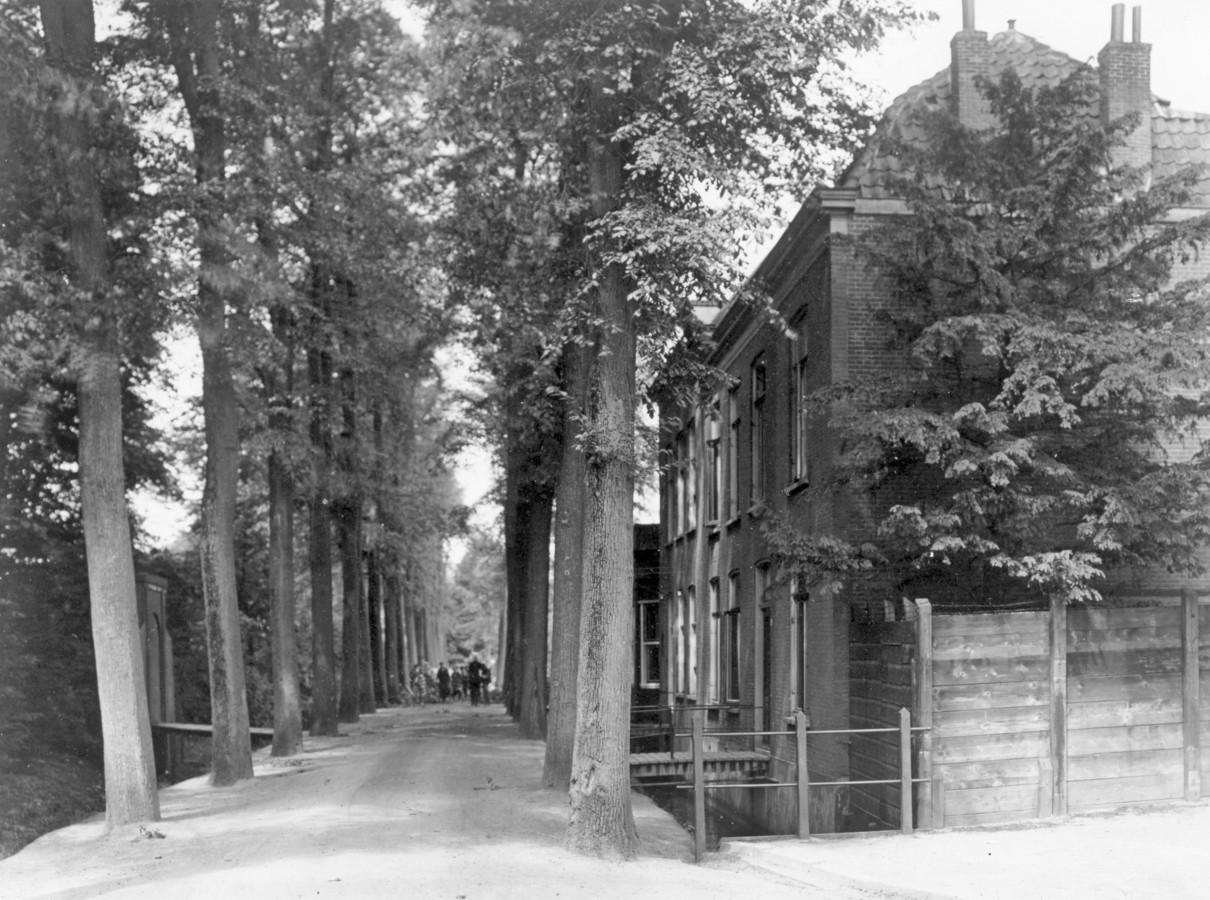 De Hallincqlaan was deel van landgoed Merwestein. De parkgrond links werd verkocht voor woningbouw. Foto vanaf de Groendijk, ca. 1925.