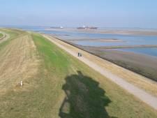 Natuurherstel in Westerschelde bij Ossenisse positief ontvangen, 'er zijn lessen geleerd uit het verleden'