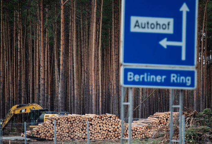 Milieuactivisten plannen protesten nu Tesla verder mag gaan met het kappen van het bos.