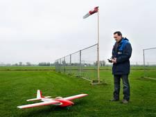 Koeien en schapen in polder Rijnenburg voorlopig geen last van modelvliegtuigjes
