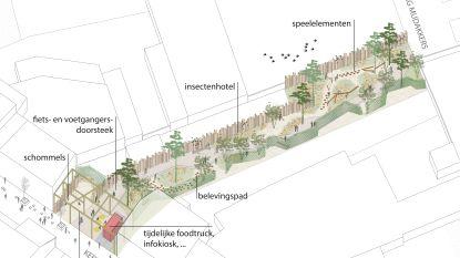 Lommel investeert de komende zes jaar ruim 65 miljoen euro: stadsdiensten in gerenoveerd voetbalstadion, nieuwe sporthal en verbeterde weginfrastructuur