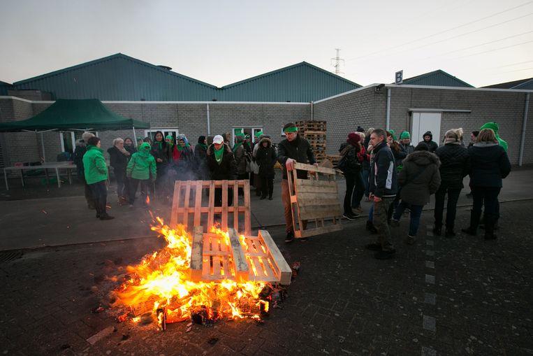 Arbeiders slepen houten paletten aan bij Champignoncultuur Jagersborg.