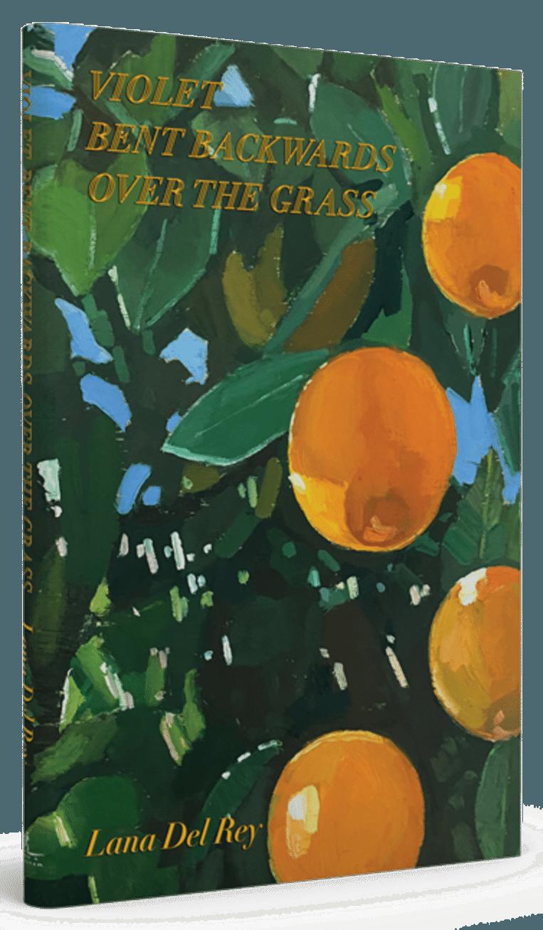 'Violet Bent Backwards Over The Grass' door Lana Del Rey.