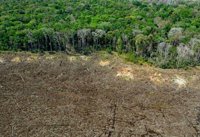Ontbossing in het Braziliaanse Amazonegebied.