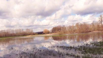 Waterpeil Demer alarmerend hoog, maar alles blijft onder controle