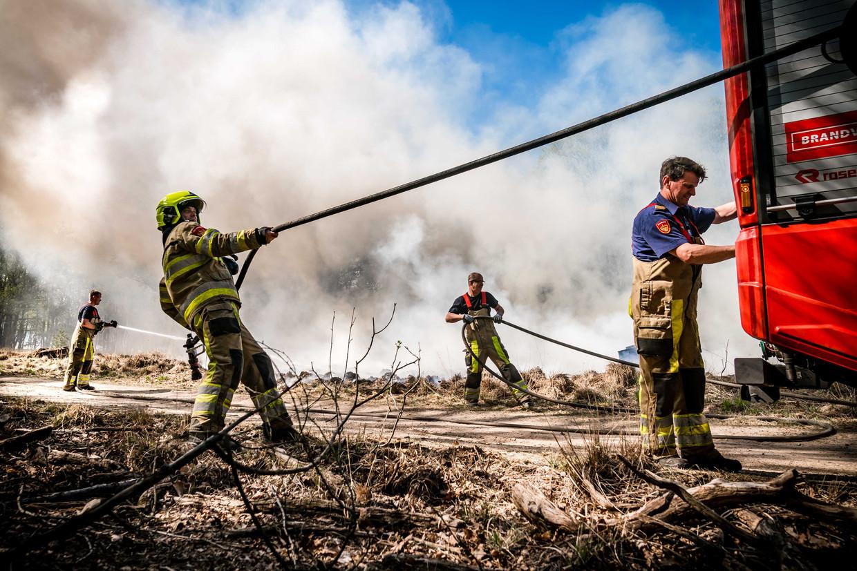 De brandweer blust in De Meinweg in het Limburgse Herkenbosch. Beeld ANP