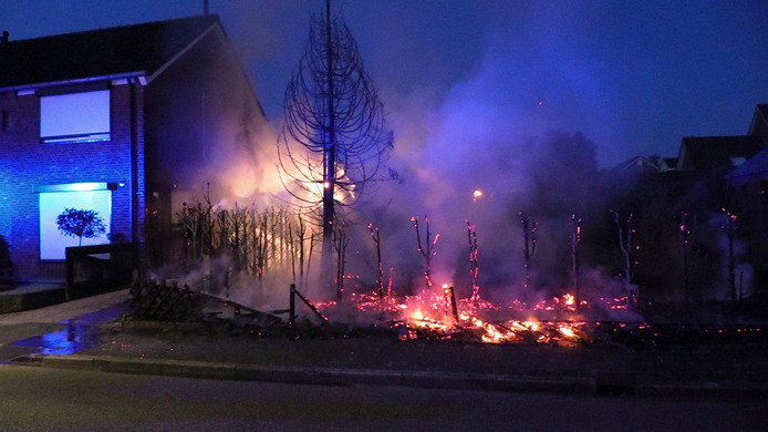 De coniferenhaag aan de Steenakker in Ulft ging in vlammen op.
