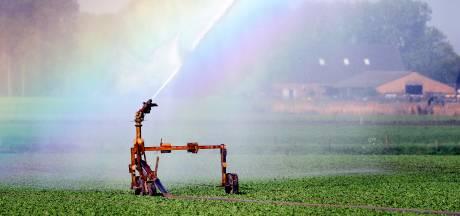 Grootste droogte in 45 jaar noopt Waterschap tot sproeiverbod op de Veluwe